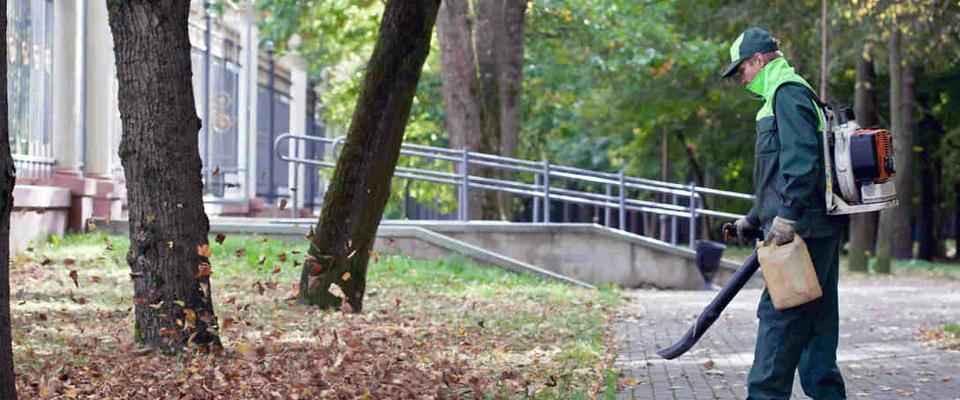 pracownik wydmuchuje liście wparku